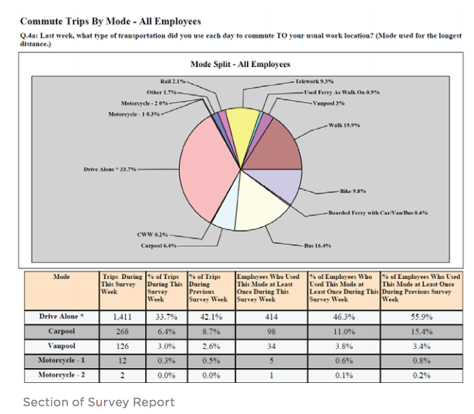 Section of Survey Report